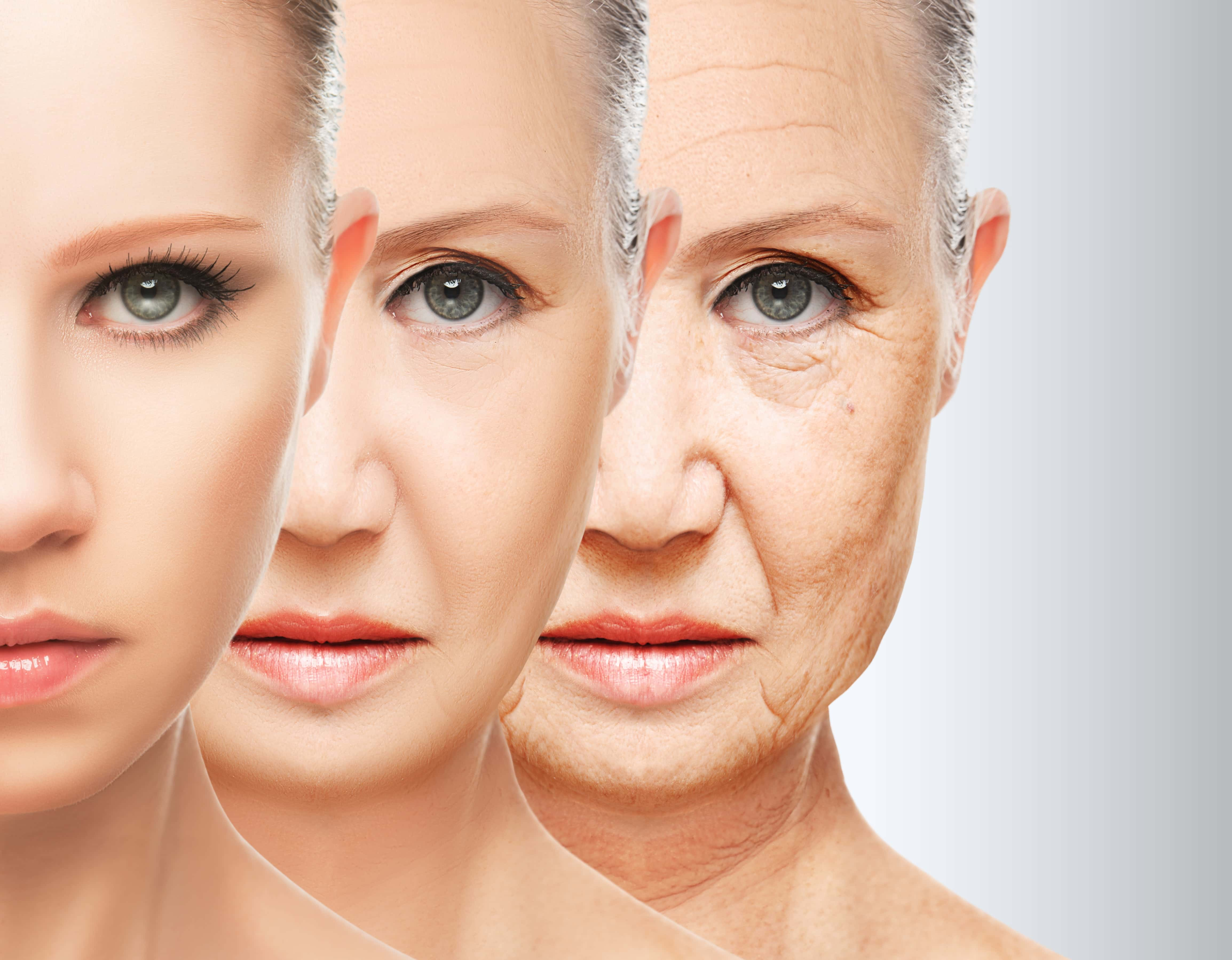 Process of Facial Aging